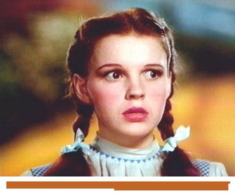 Dorothy struggles to understand Drupal