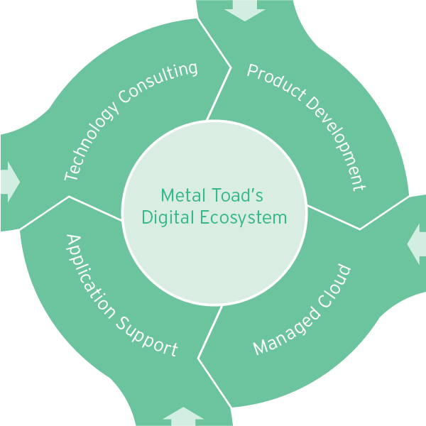 Metal Toad Digital Ecosystem