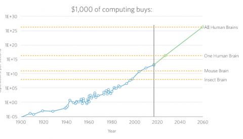 1,000 of computing buys