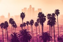 Los Angeles City skyline with palm trees